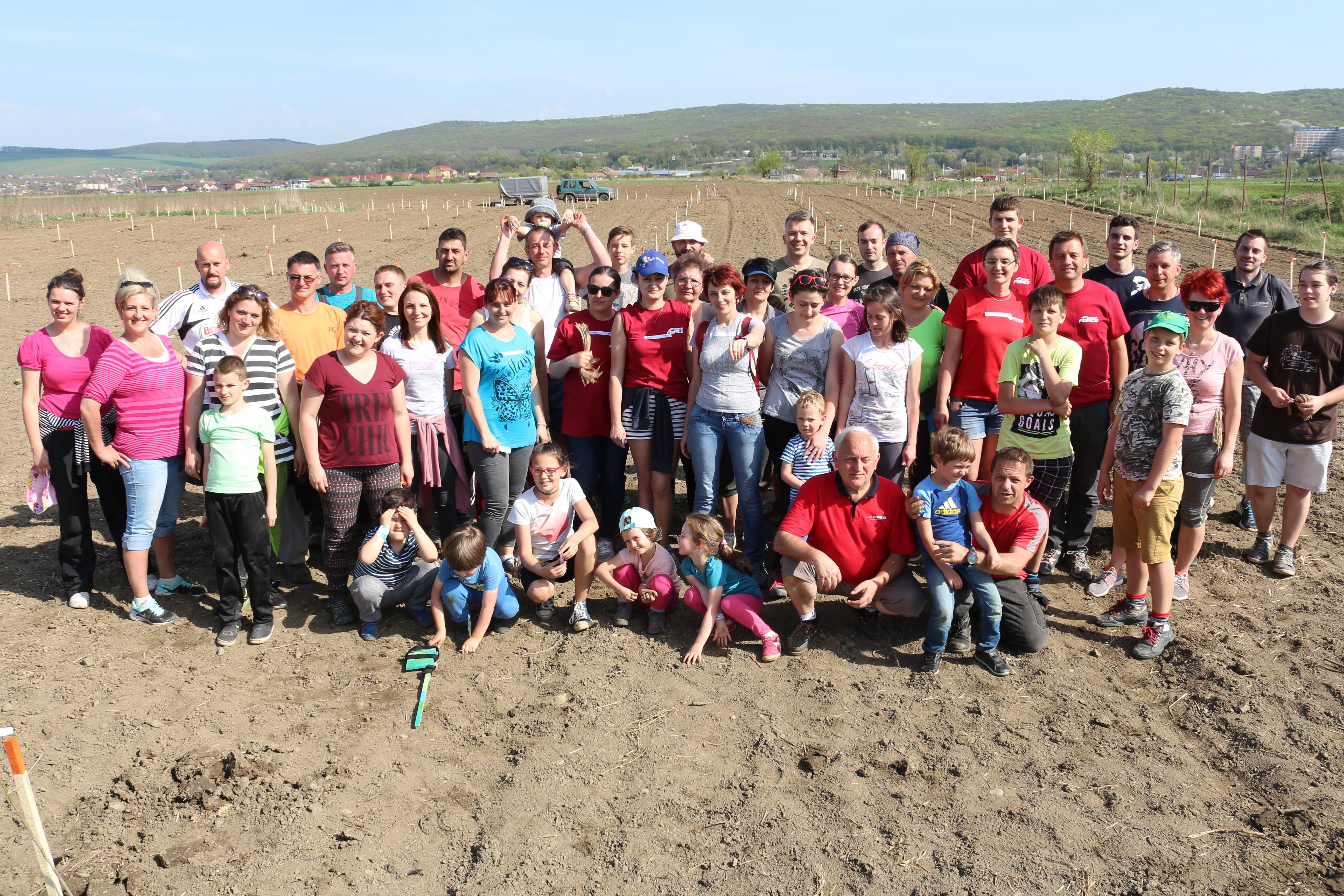 Grupul de firme Fomco a plantat peste 1000 de copaci la Sângeorgiu de Mureș